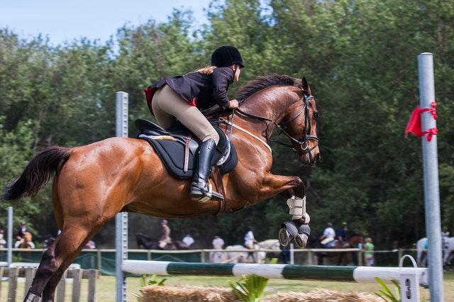 étrier équitation