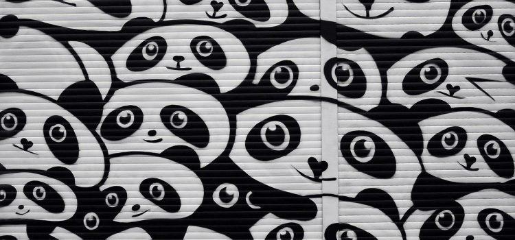 Quels accessoires avoir si vous êtes un(e) passionné(e) de panda?